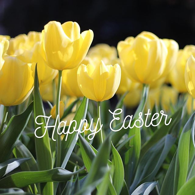 Celebrate this Easter with a heart filled with love and peace. Have a blessed and wonderful Easter!