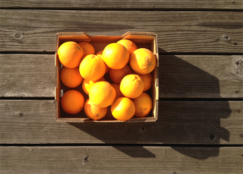 Object: box of oranges Size: 1'x1.5' Date When Given: every christmas Age When Given: 26   Location: Oakland, California  Submitted by: Patrick Alfred