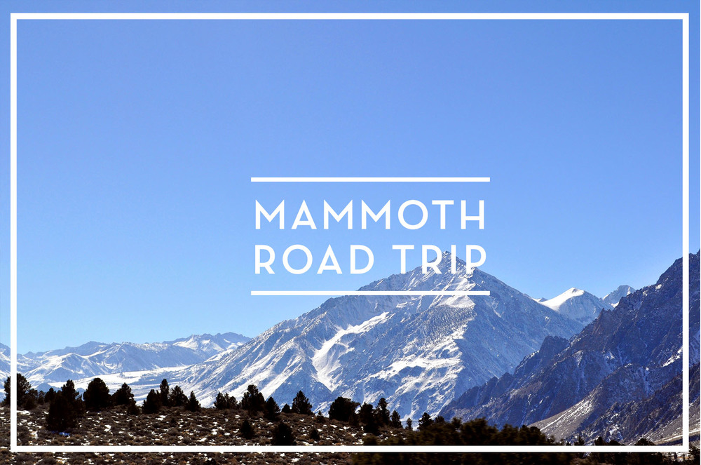 Mammoth__0003_V4.jpg