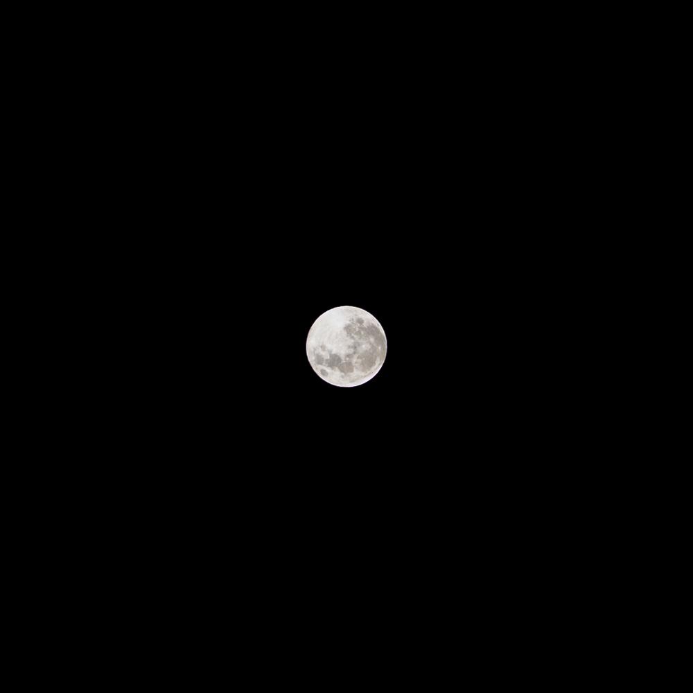 cut luna.jpg