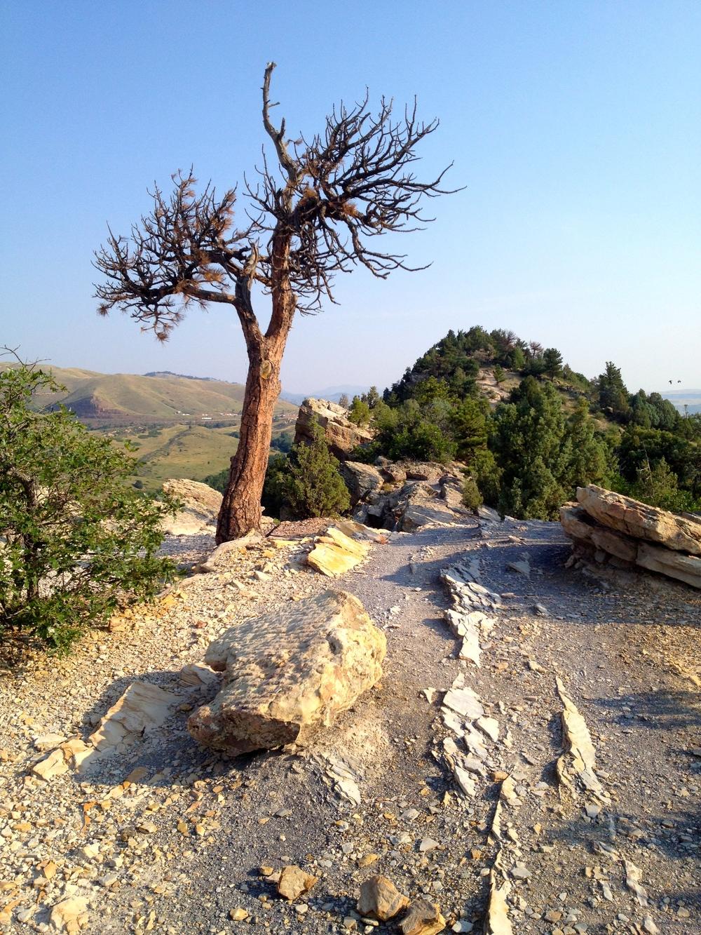 Views along the Dakota Ridge Trail