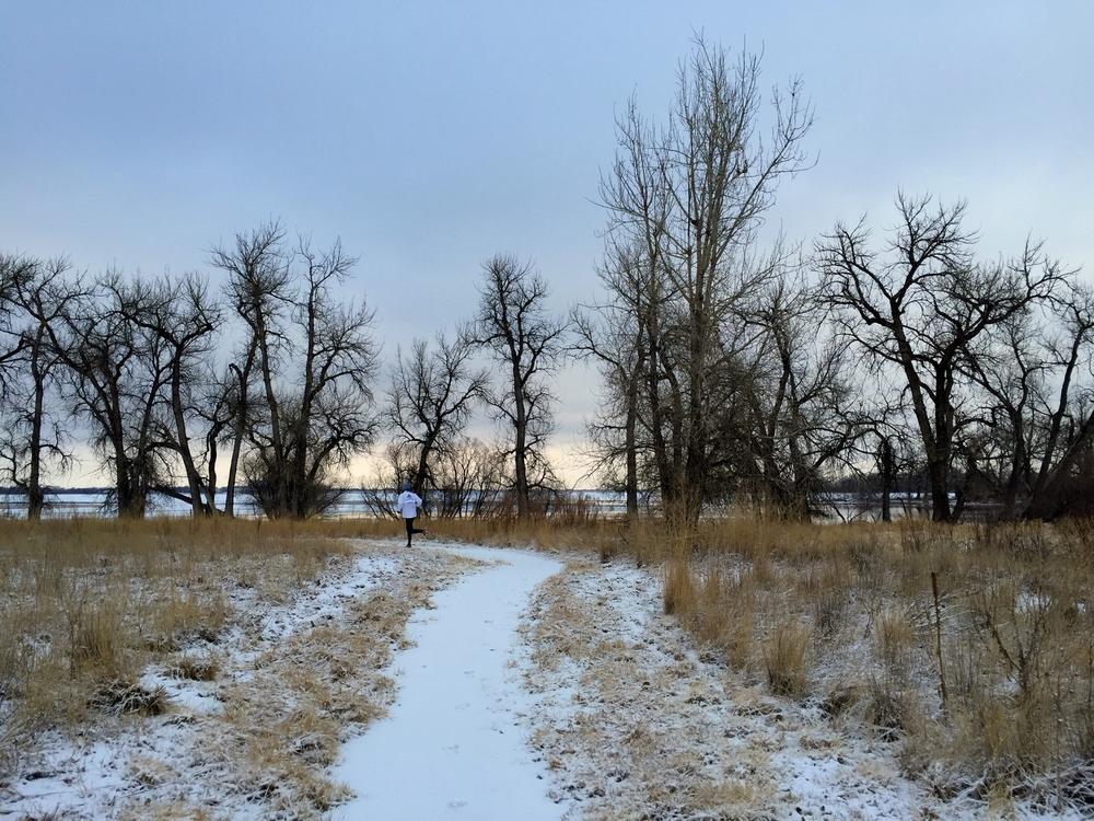 On the Niedrach Trail