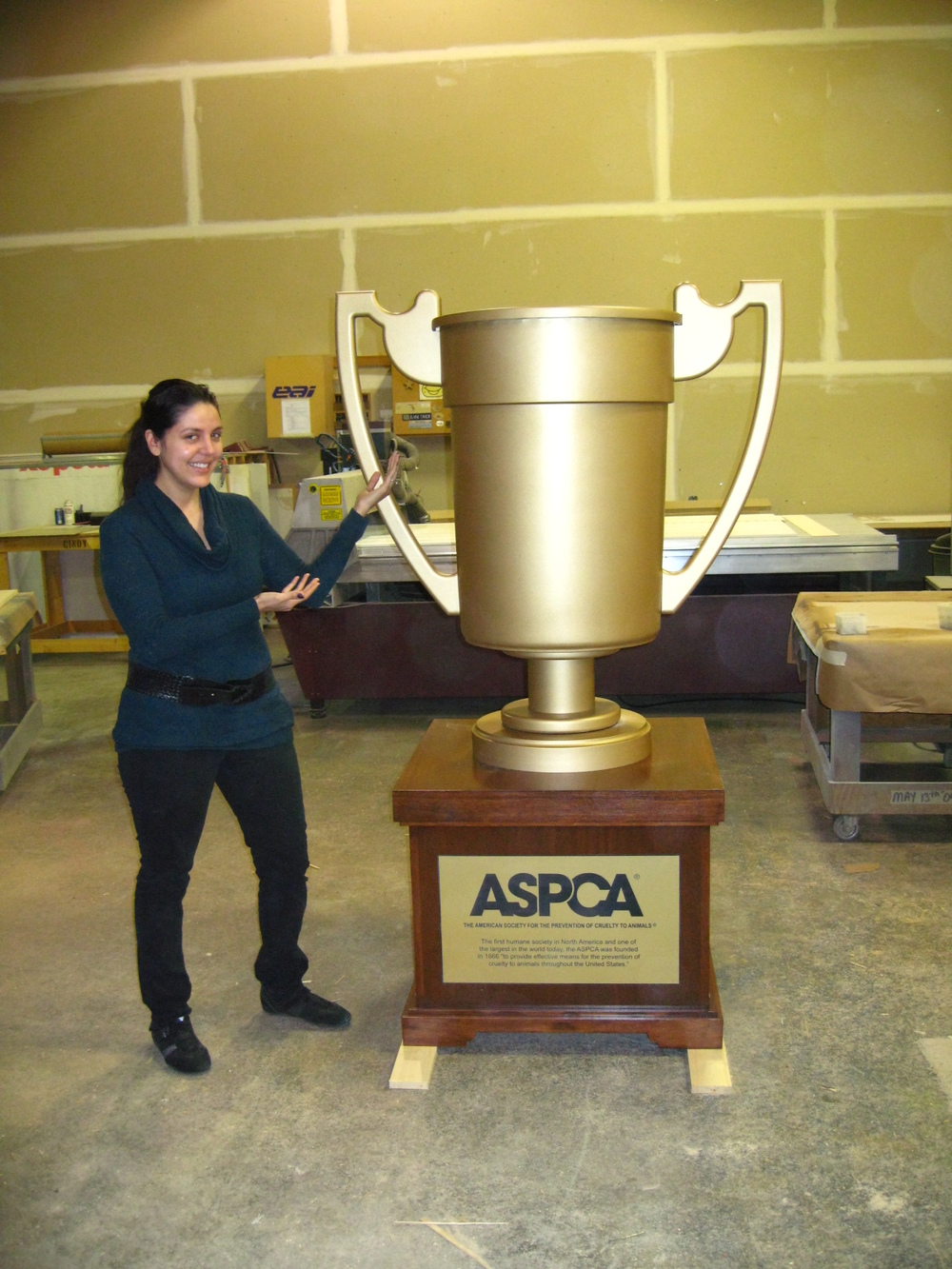 Money Funnel for the ASPCA-The American Society for the Prevention of Cruelty to Animals.