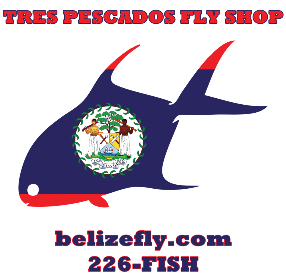 Belize Fly-Logo-High Res-Rockwell-3.png
