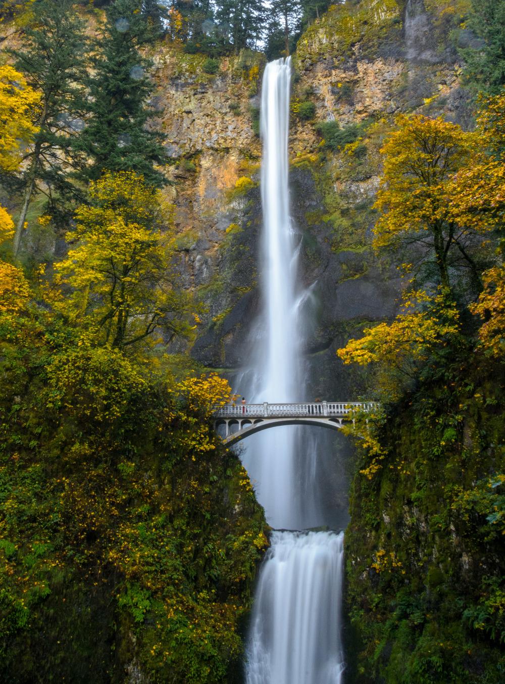 PortlandOregon_20141107_389.jpg