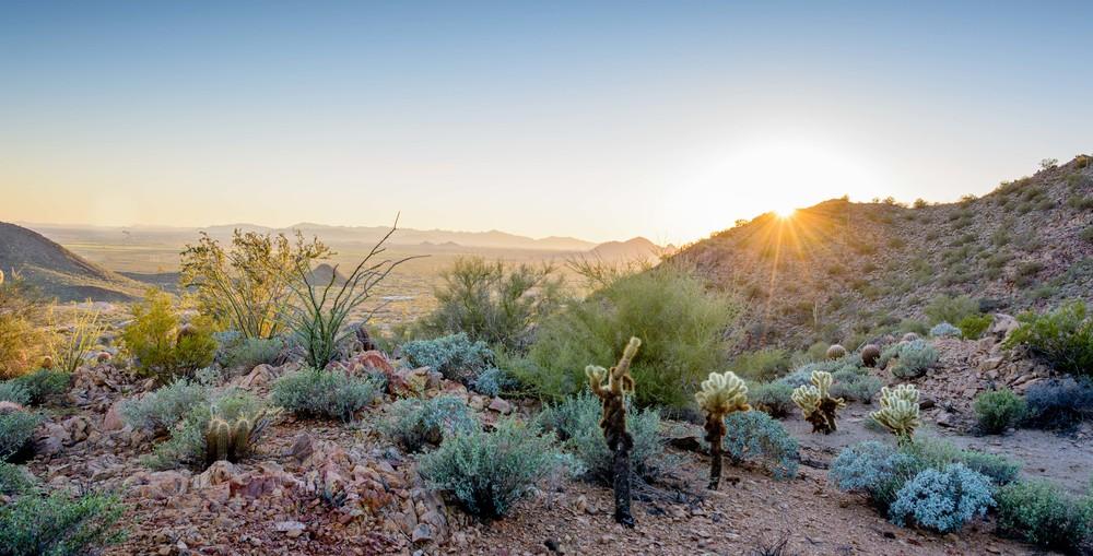 Arizona_20150211_039.jpg