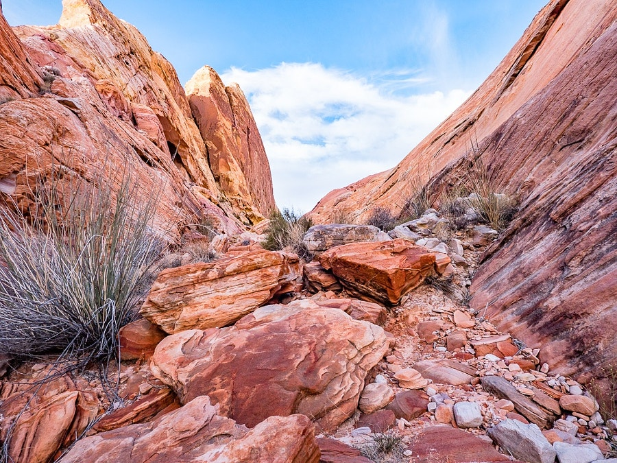 Valley of Fire 15