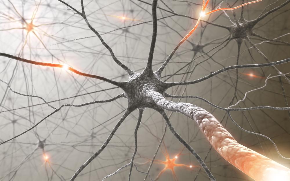 bigstock-Neurons-5563023.jpg