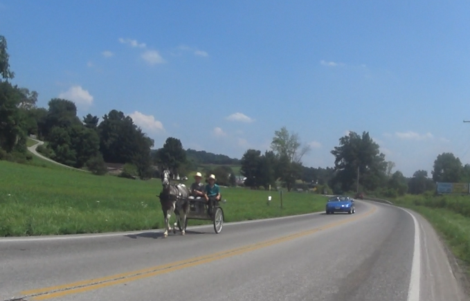 Amish buggy shares the road