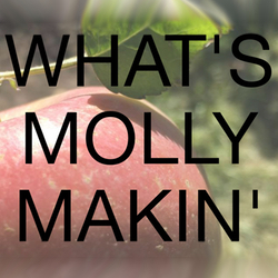 What's Molly Makin Logo 250x250.jpg