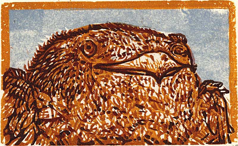 "Fire Bellied FInch, 2.5"" x 4"" Woodcut Print on Mulberry"