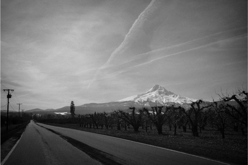 Oregon 2012