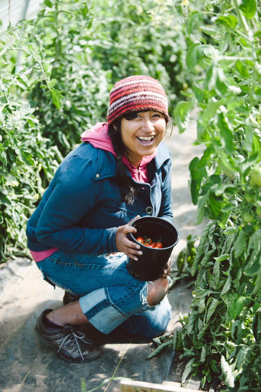 farming_garden_surrey