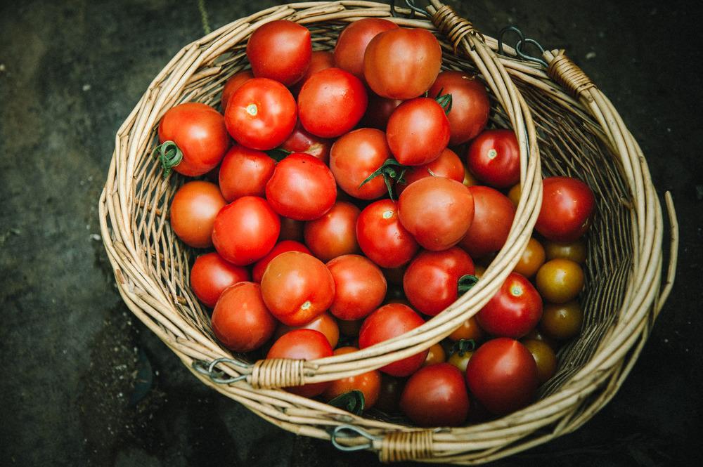 food_tomato