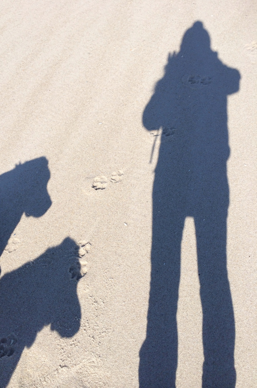 Wish l could outline the shadow in the sand...