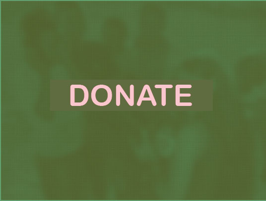 Donate-button-green.jpg
