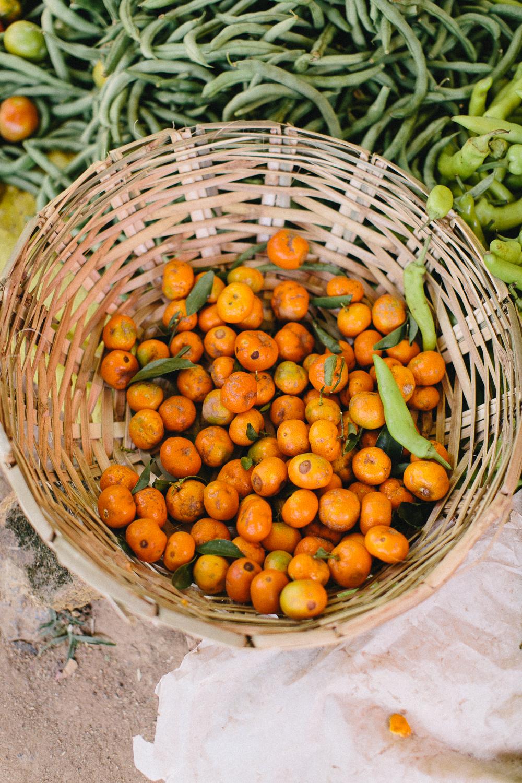 Fernwehosophy Sri Lanka Julia Winkler (22).jpg