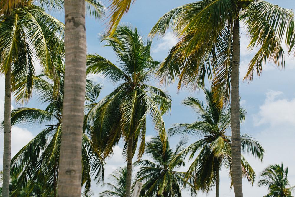 Fernwehosophy Sri Lanka Julia Winkler (1).jpg
