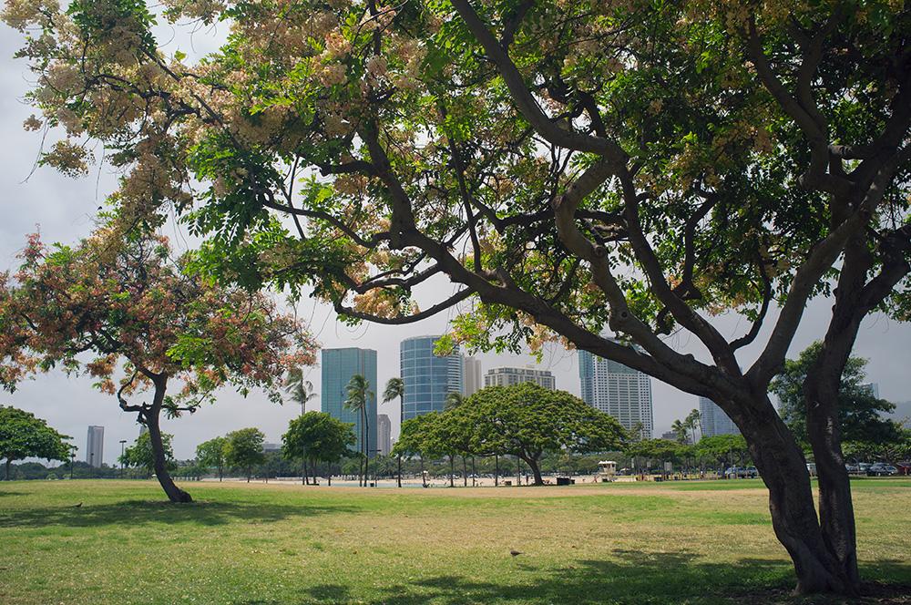 04_Oahu-HNL_Ala Moana Beach park.jpg