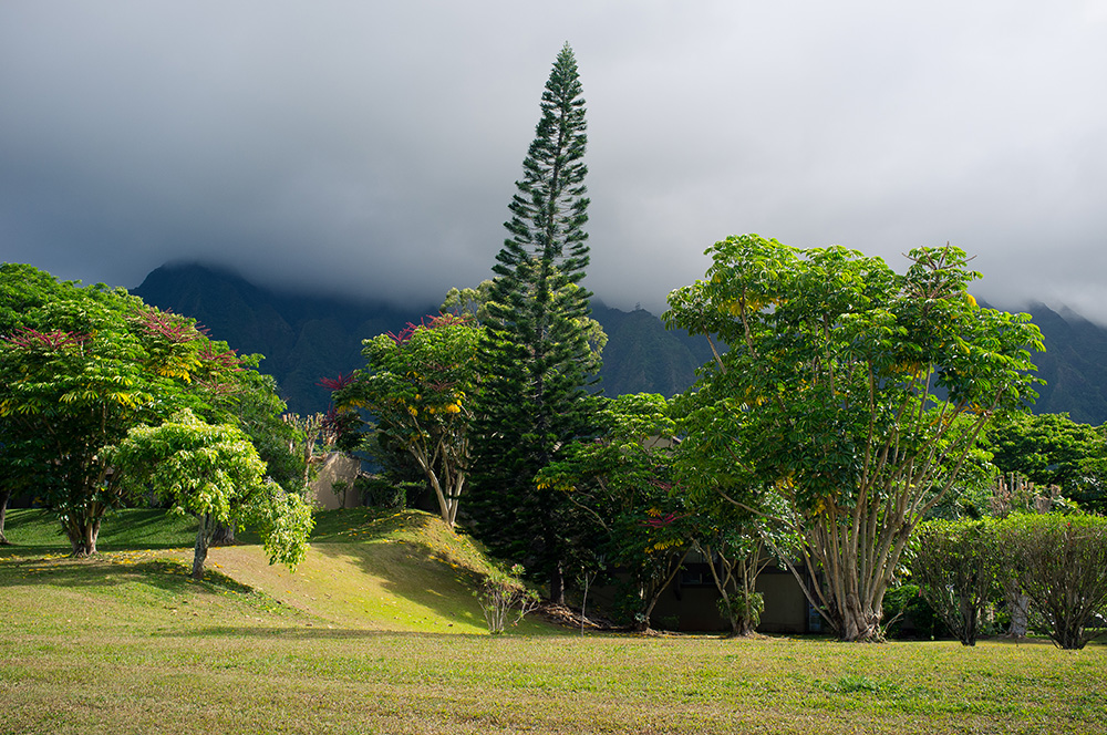15_Oahu.jpg