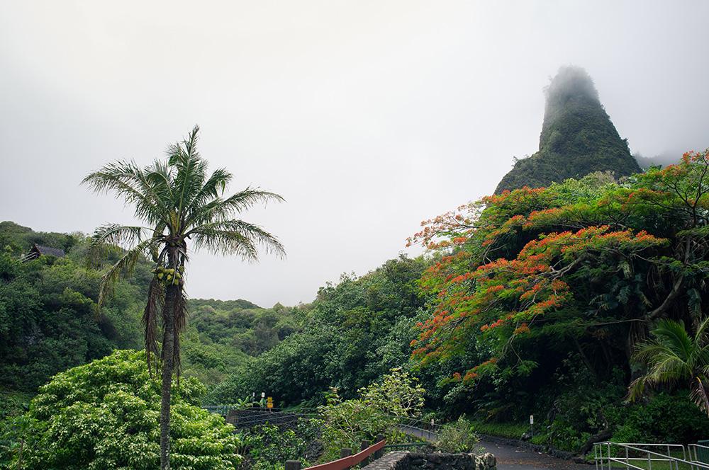 19_Maui-Iao Valley mit Iao Needle.jpg