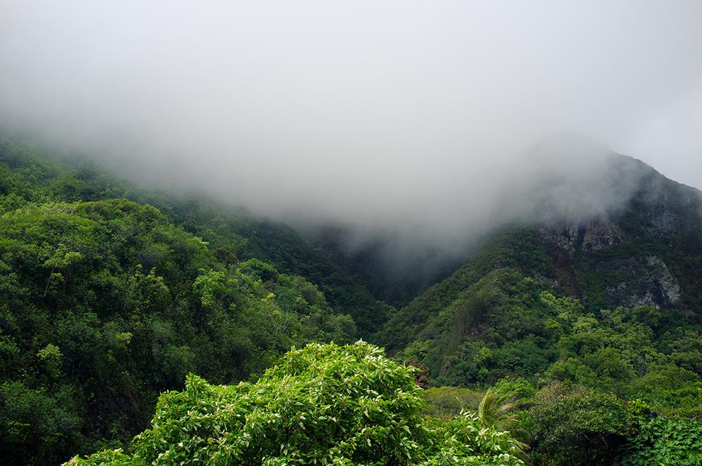 22_Maui-Iao Valley.jpg