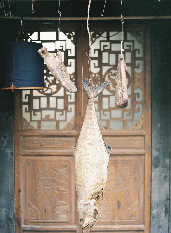 JenHuangChina2013-50.jpg