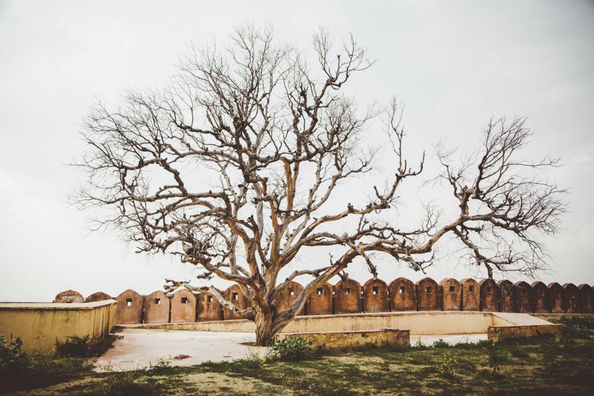 Jaipur_3_Marianna_Jamadi.jpg