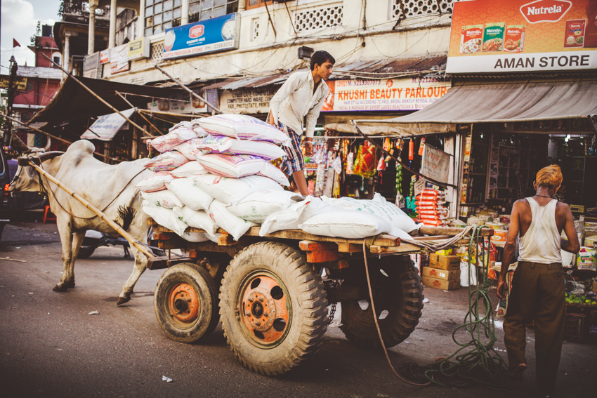 New Delhi_5_Marianna_Jamadi.jpg