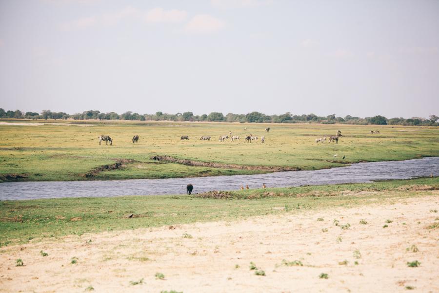 Botswana_Julia_Hofmann (28 von 50).jpg