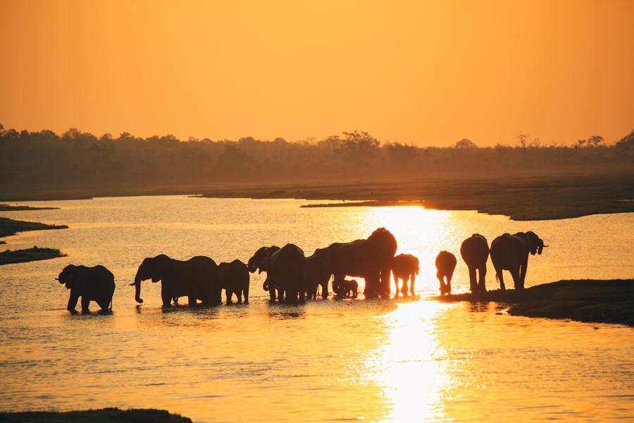 Botswana_Julia_Hofmann (34 von 50).jpg