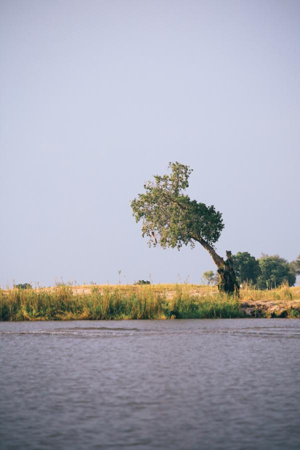 Botswana_Julia_Hofmann (47 von 50).jpg