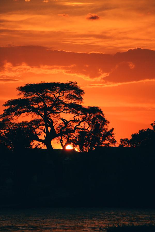 Botswana_Julia_Hofmann (50 von 50).jpg