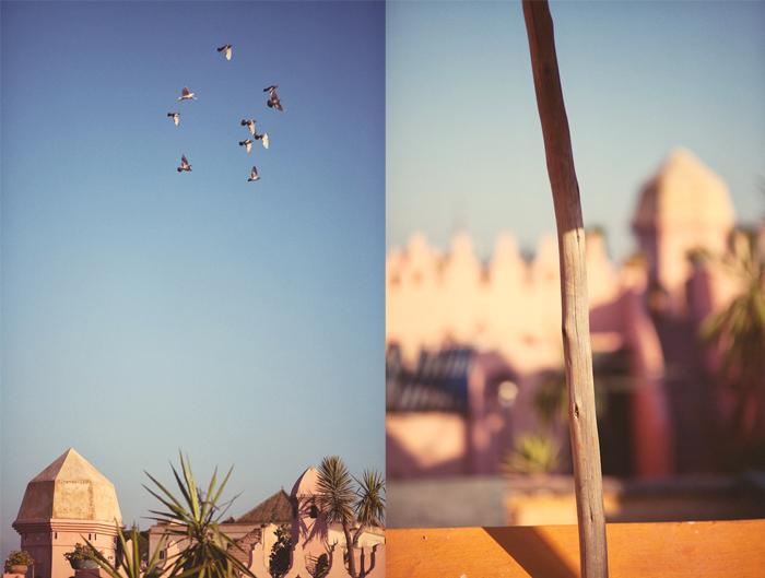 Chris Spira Fernwehosophy Marrakech Morocco (7).jpg