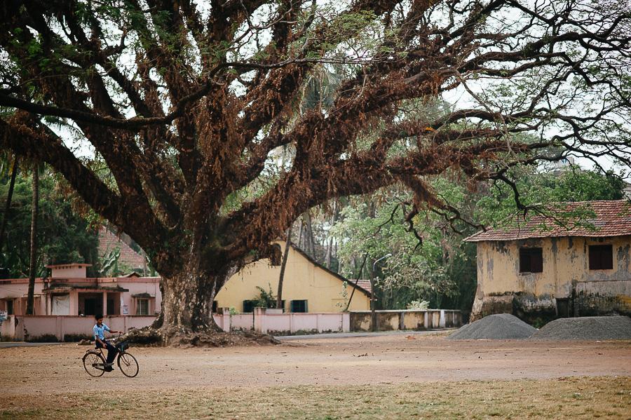 Simon-Mikolasch_Indien_Fernwehosophy_Travel_Photography (50).jpg