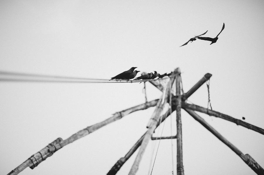 Simon-Mikolasch_Indien_Fernwehosophy_Travel_Photography (53).jpg