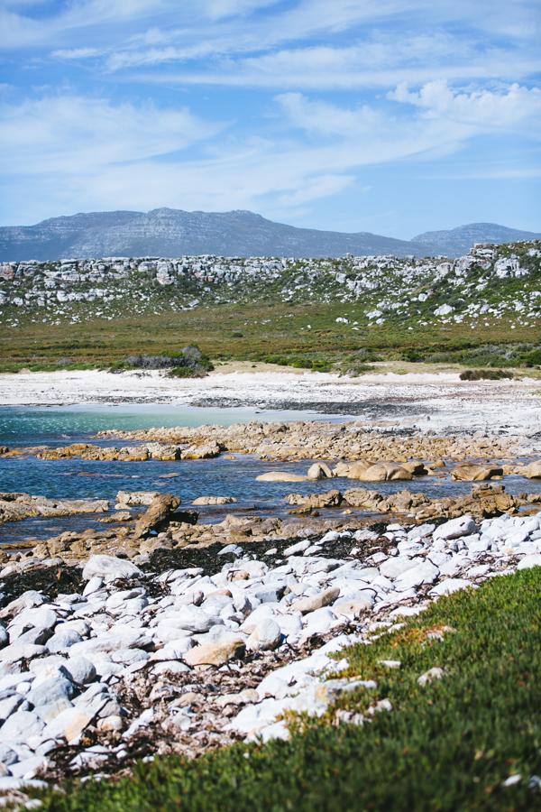 Südafrika_Julia_Hofmann (65 von 100).jpg