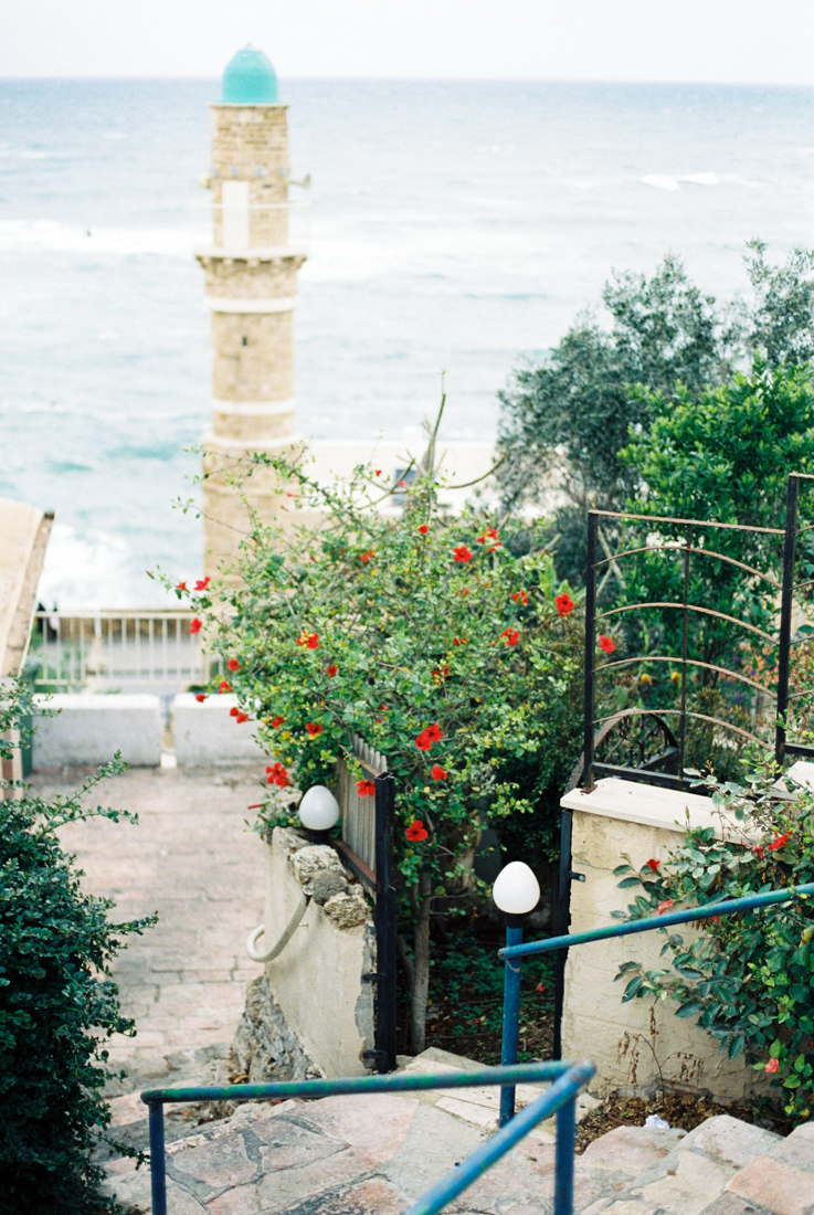 IsabelleHesselberg-TelAviv-Israel-Fuji400H-FilmPhotographer-17.jpg