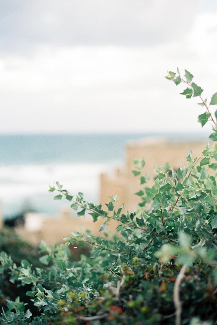IsabelleHesselberg-TelAviv-Israel-Fuji400H-FilmPhotographer-20.jpg