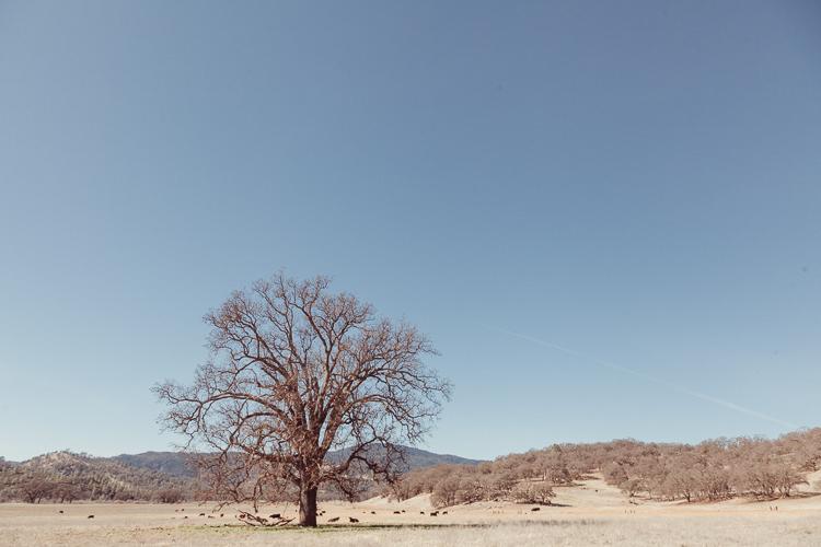 Fernwehosophy_Kalifornien+Nevada-021.jpg