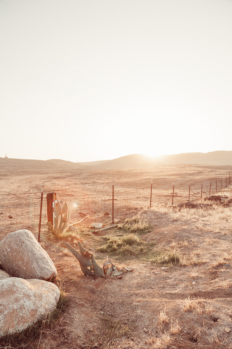 Fernwehosophy_Kalifornien+Nevada-032.jpg