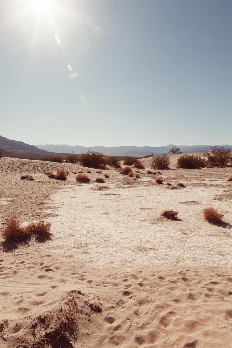 Fernwehosophy_Kalifornien+Nevada-051.jpg