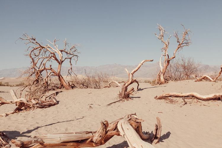 Fernwehosophy_Kalifornien+Nevada-052.jpg