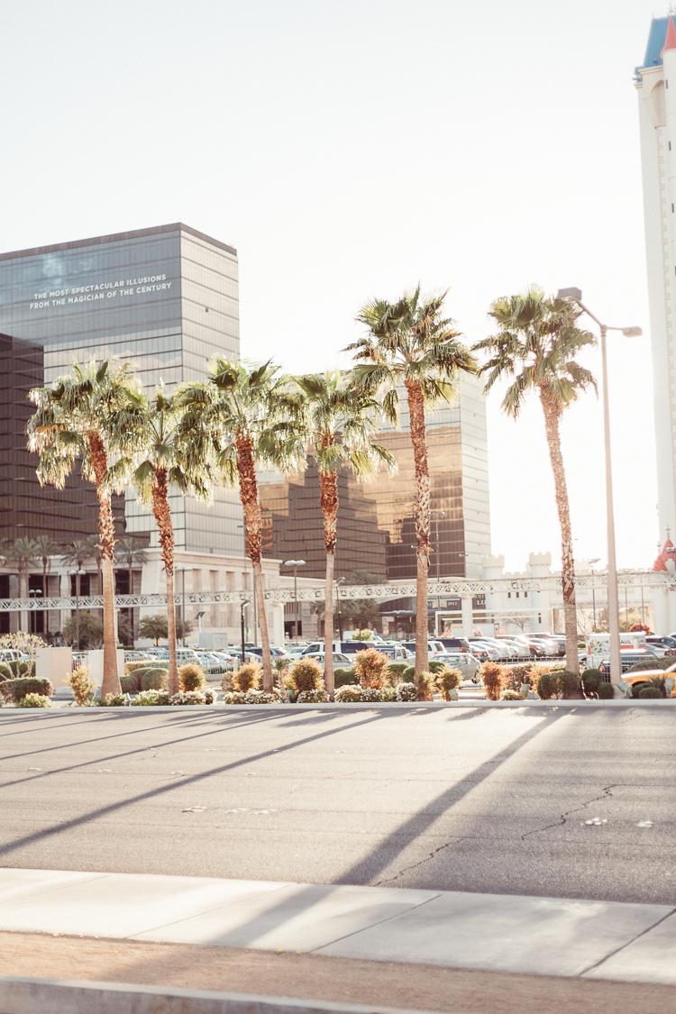 Fernwehosophy_Kalifornien+Nevada-104.jpg