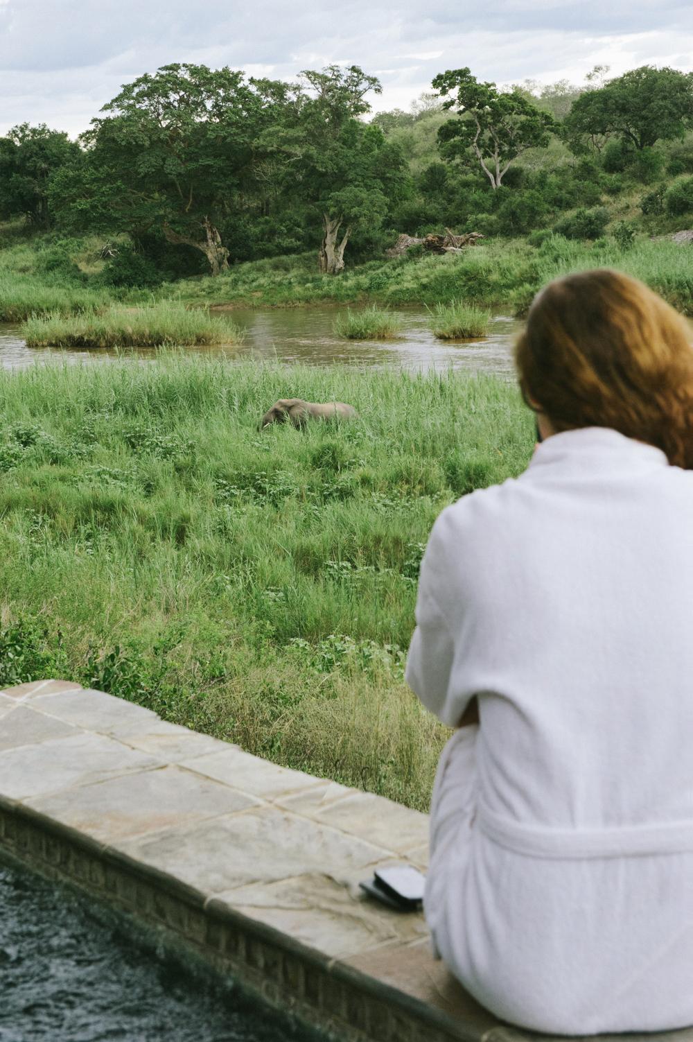 Lion Sands Kruger Park Fernwehosophy Elisaveta Schadrin-Esse (57).jpg