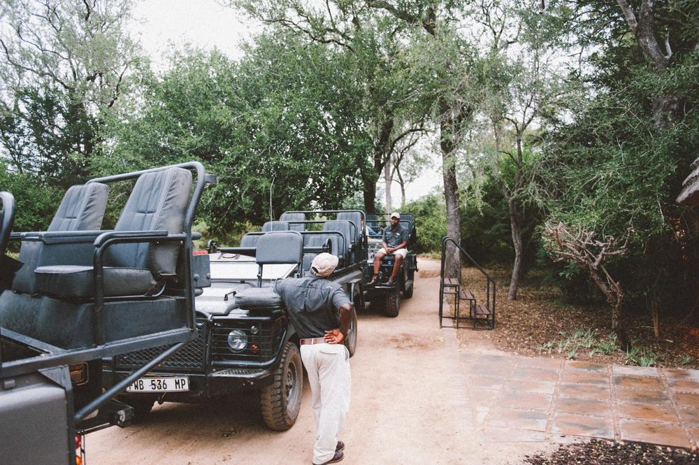 Lion Sands Kruger Park Fernwehosophy Elisaveta Schadrin-Esse (130).jpg