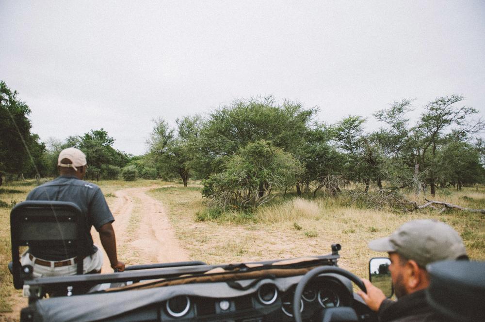 Lion Sands Kruger Park Fernwehosophy Elisaveta Schadrin-Esse (156).jpg