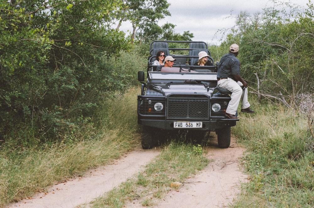 Lion Sands Kruger Park Fernwehosophy Elisaveta Schadrin-Esse (93).jpg