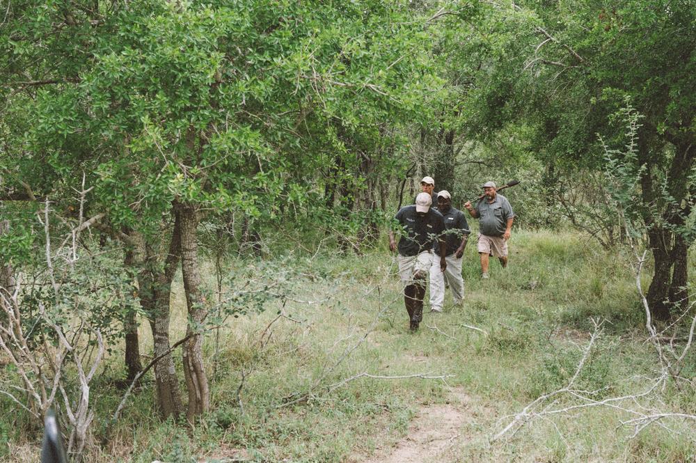 Lion Sands Kruger Park Fernwehosophy Elisaveta Schadrin-Esse (92).jpg