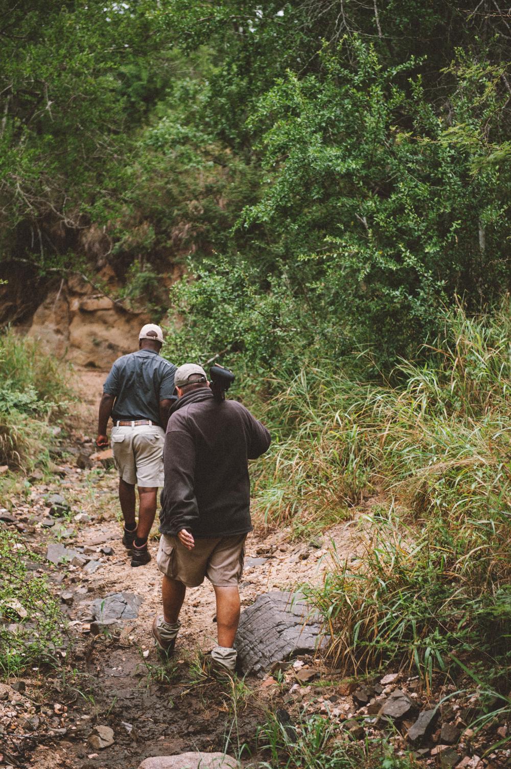 Lion Sands Kruger Park Fernwehosophy Elisaveta Schadrin-Esse (149).jpg